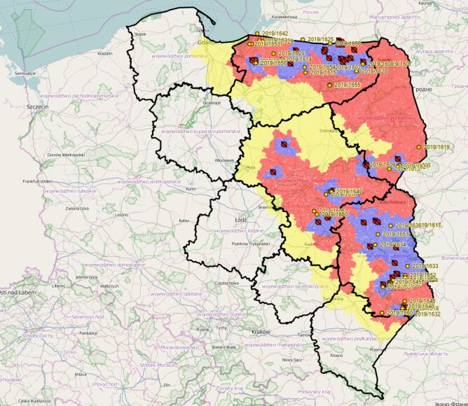 Mapa ognisk i przypadków ASF w Polsce oraz aktualny zasięg obszarów objętych restrykcjami (wetgiw.gov.pl)