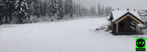 Pokazujecie pierwszy śnieg