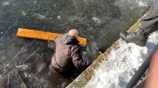 Łyżwiarze na topniejącym lodzie. Akcja ratunkowa w Hadze