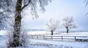 Prognoza pogody na zimę 2019/2020 w Polsce